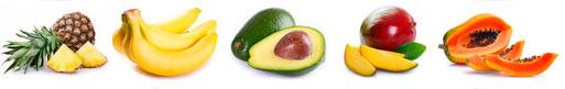maduracion-platano-piña-aguacate-papaya--frio-vizcaya